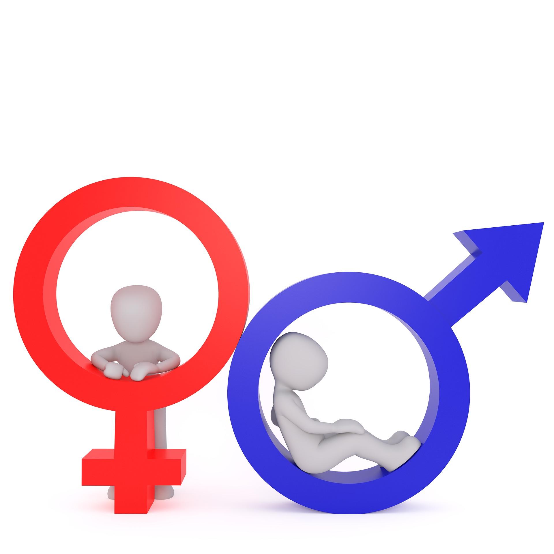 Im Genderwunderland